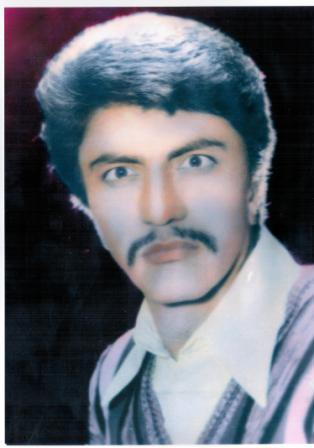 محمد افضلی